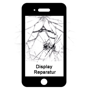Display Reparatur