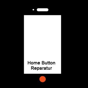 Home Button Reparatur
