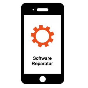 Software Reparatur